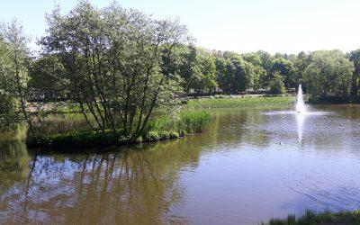 Majowy spacer w olsztyńskim parku